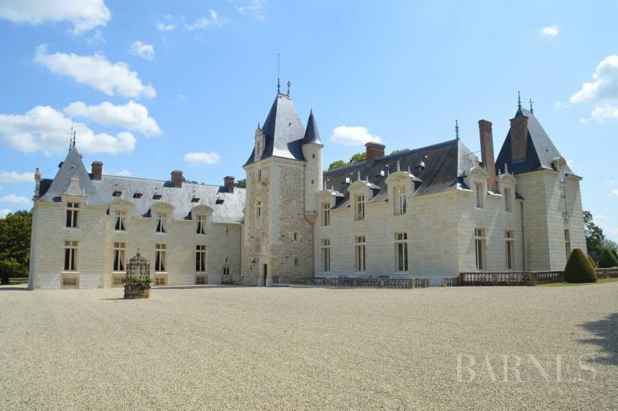 Doué-en-Anjou  - Château 30 Pièces