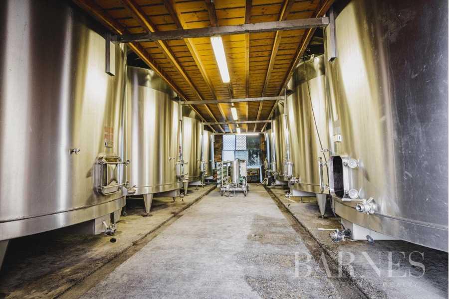 Bordeaux  - Propriété viticole 1 Pièce