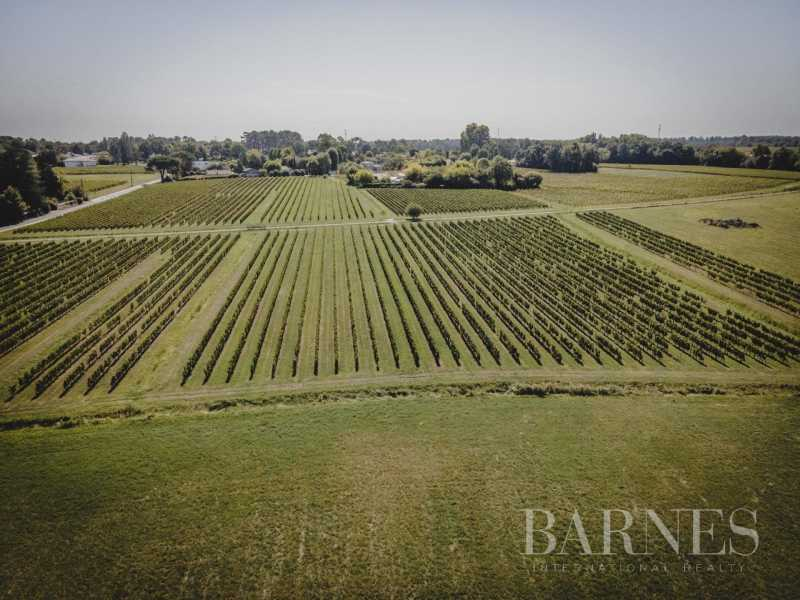 Bordeaux  - Propriété viticole 8 Pièces