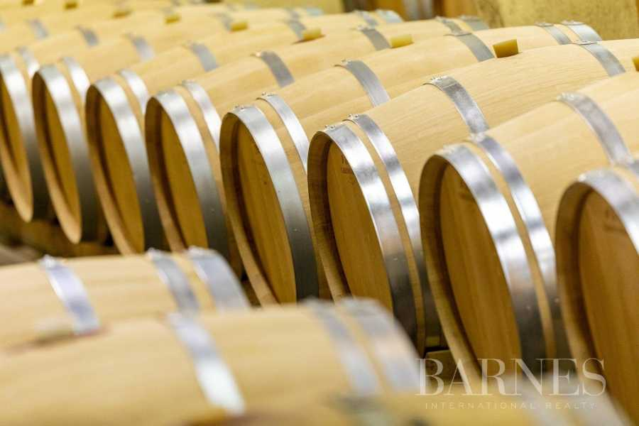 Bordeaux  - Propriété viticole 13 Pièces