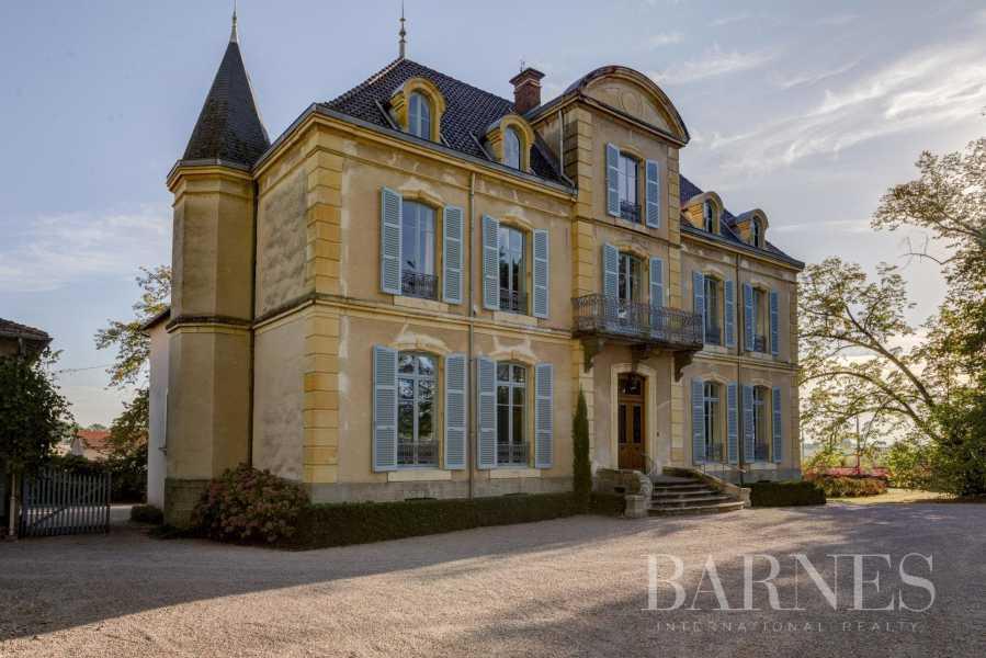 La Pacaudière  - Château 16 Pièces 10 Chambres