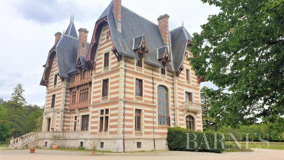 Theillay  - Château 18 Pièces 17 Chambres