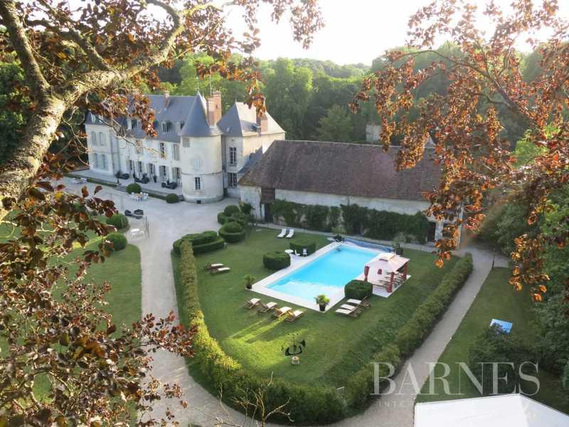 Montargis  - Château 20 Pièces