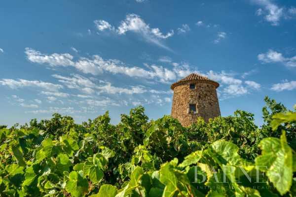 Propriété viticole Montpellier  -  ref 4238480 (picture 1)