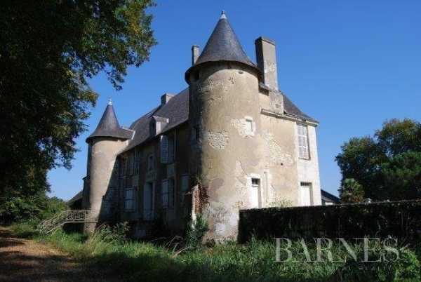 Château Châtellerault  -  ref 4203015 (picture 1)