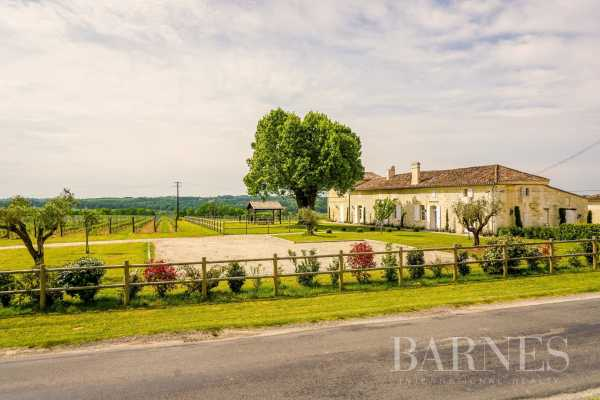 Vineyard property Bordeaux  -  ref 3705202 (picture 1)
