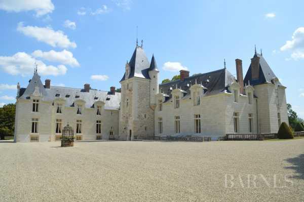Castle Dou�-en-Anjou  -  ref 3568899 (picture 2)