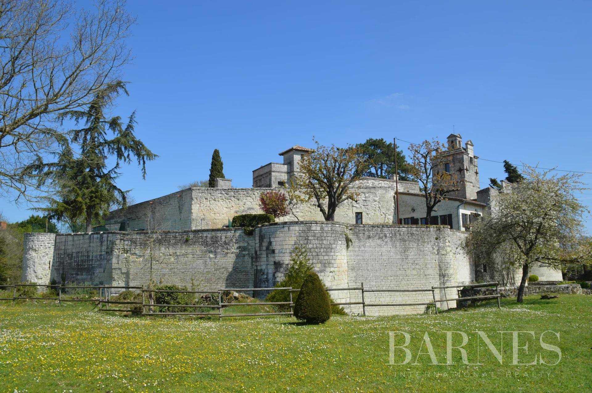 Château Loudun  -  ref 5507808 (picture 2)