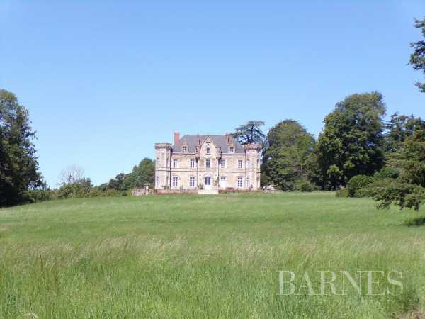 Château Cholet  -  ref 4111427 (picture 2)