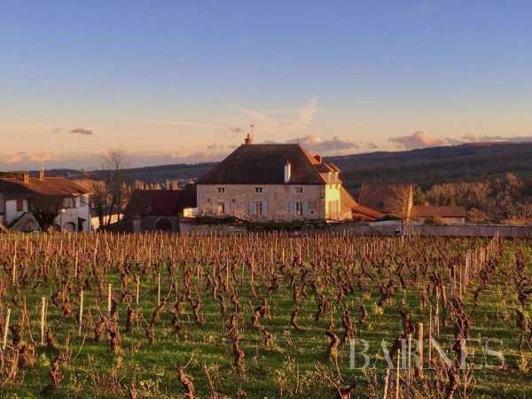 Maison de village Mercurey  -  ref 4810779 (picture 2)