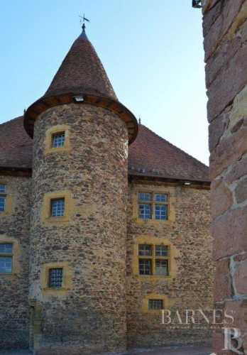 Manoir Le Coteau  -  ref 4115499 (picture 2)