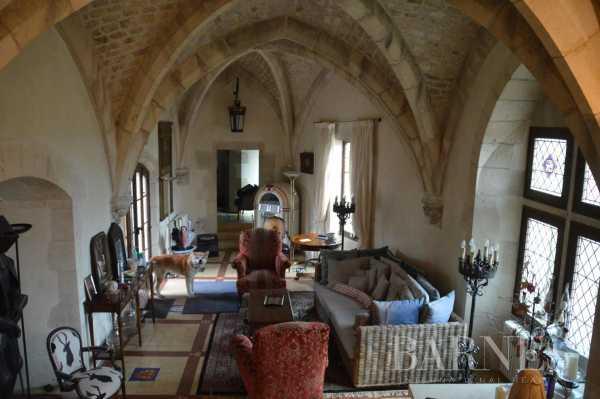 Château La Roche-Posay  -  ref 5347073 (picture 3)