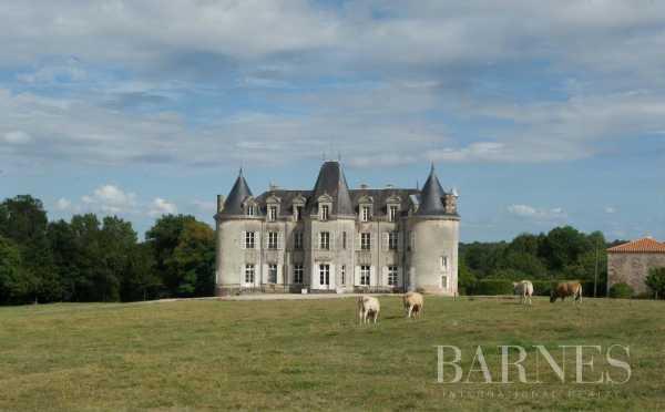 Château Fontenay-le-Comte  -  ref 3431756 (picture 1)