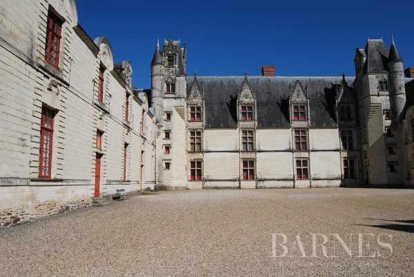 Château Nantes  -  ref 2553918 (picture 2)