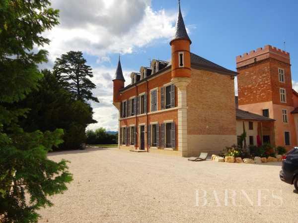 Château Mâcon  -  ref 3793576 (picture 1)