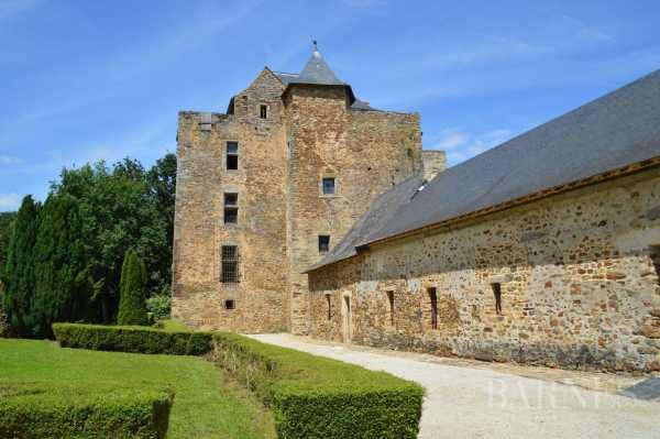 Château Segr�-en-Anjou Bleu  -  ref 2699169 (picture 2)