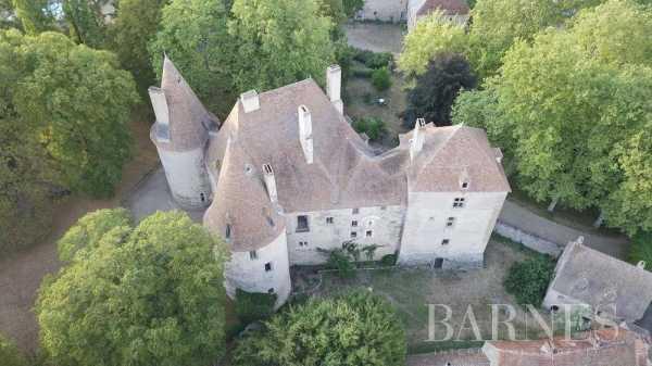 Château Vichy  -  ref 5987357 (picture 1)