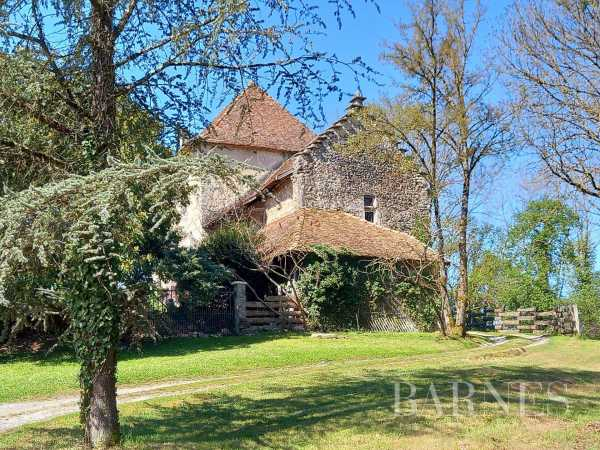 Propriété Saint-Victor-de-Morestel  -  ref 4637326 (picture 3)