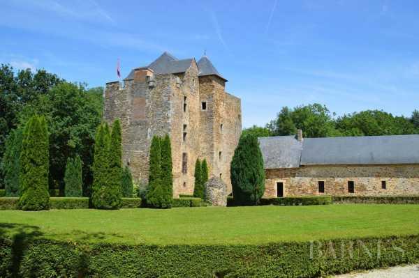 Castle Segr�-en-Anjou Bleu  -  ref 2699169 (picture 1)