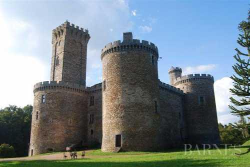 Castle Limoges  -  ref 2553638 (picture 3)