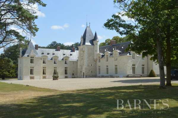 Château Doué-en-Anjou  -  ref 3568899 (picture 2)