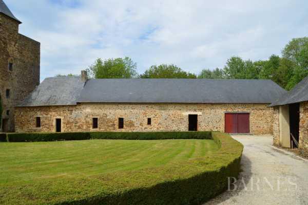 Château Segré-en-Anjou Bleu  -  ref 2699169 (picture 3)