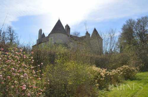 Château La Roche-Posay  -  ref 2553626 (picture 1)