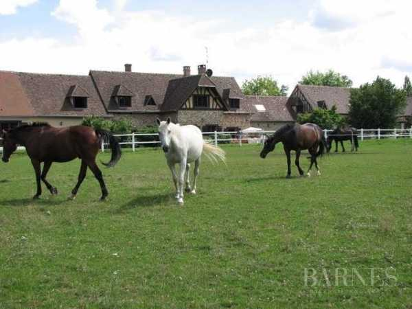 Equestrian estate Damville  -  ref 3395968 (picture 1)