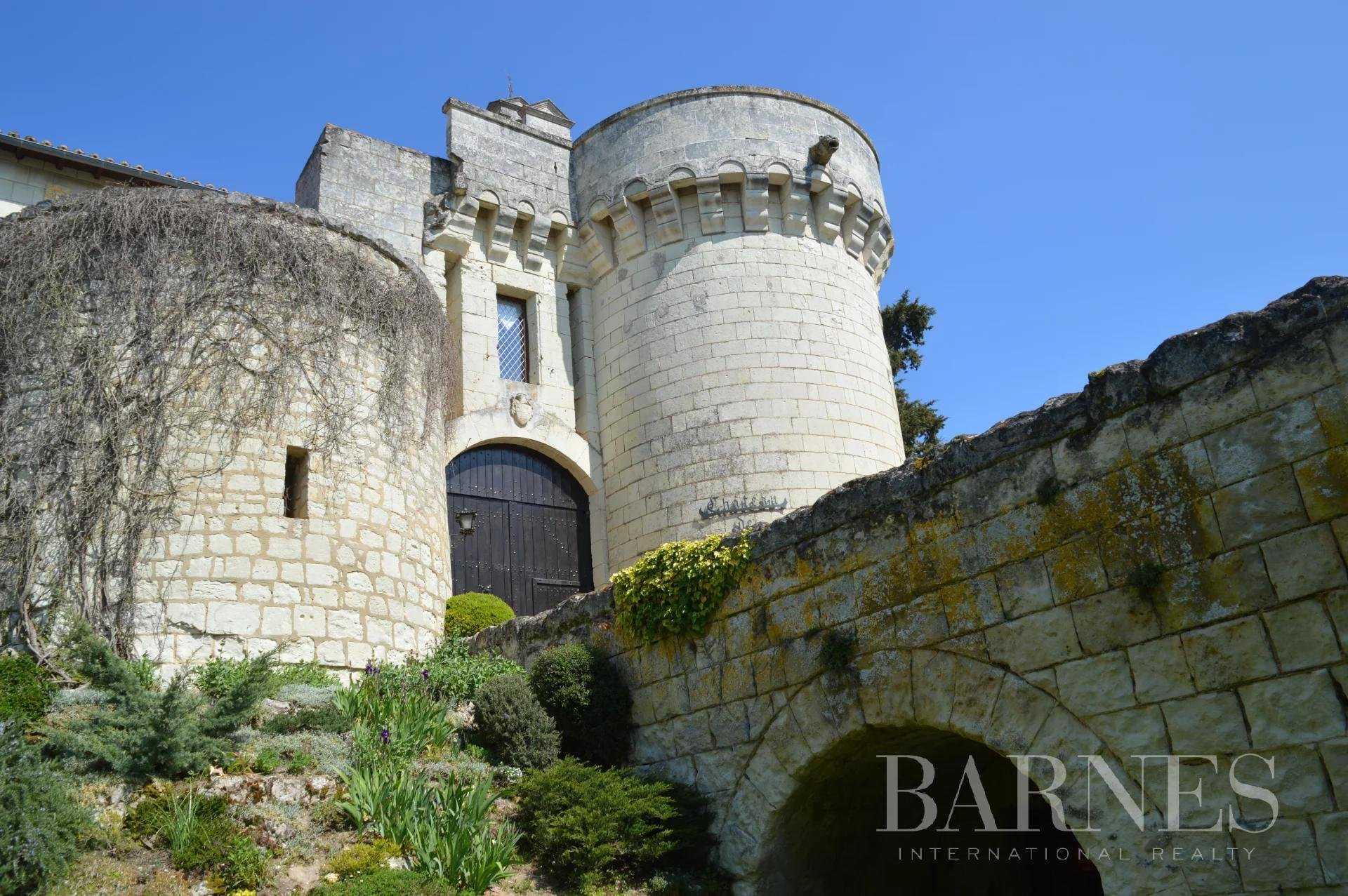 Château Loudun  -  ref 5507808 (picture 1)