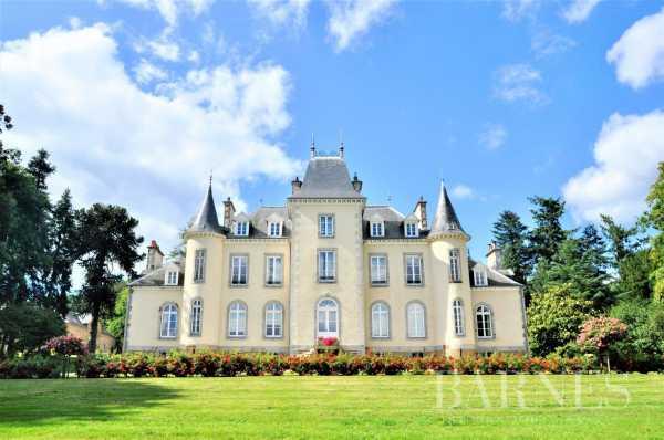 Château Fougères  -  ref 4220237 (picture 1)