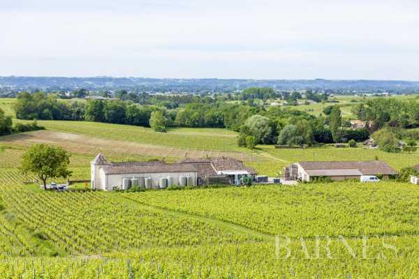 Propriété viticole Bordeaux  -  ref 3705013 (picture 2)