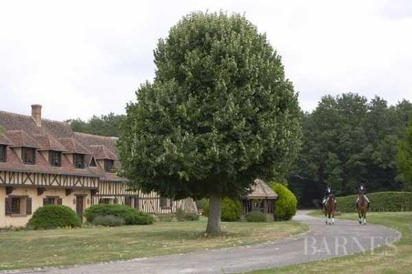 Equestrian estate Damville  -  ref 3395968 (picture 3)