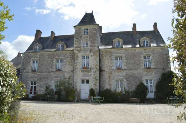 Castle Nantes  -  ref 2553960 (picture 3)