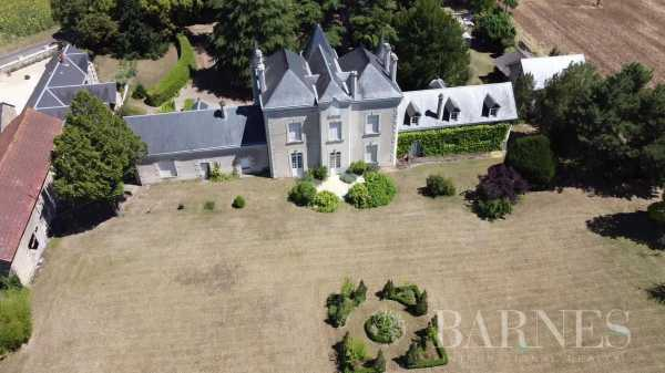 Château Thouars  -  ref 5961942 (picture 1)
