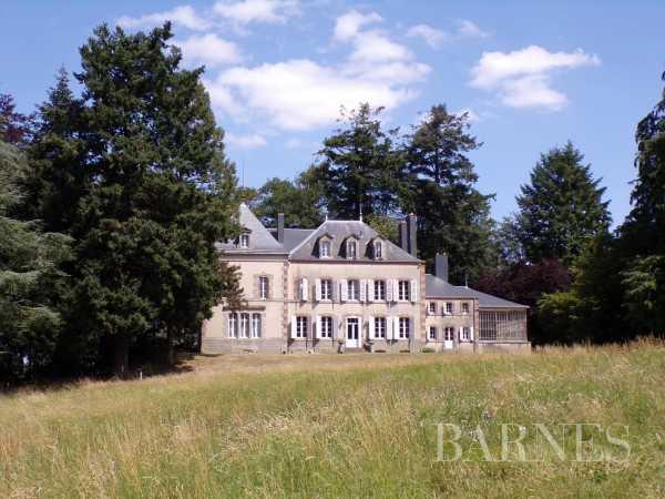 Château Pouzauges  -  ref 2638929 (picture 1)