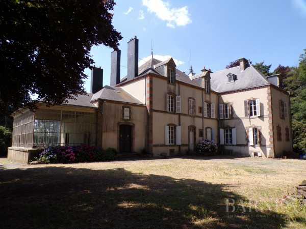 Castle Pouzauges  -  ref 2638929 (picture 3)