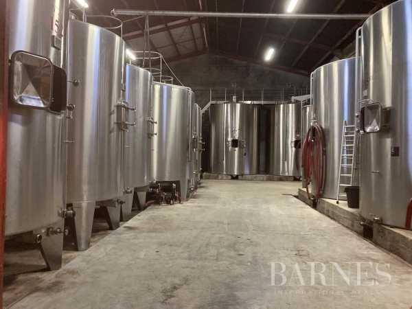 Propriété viticole Bordeaux  -  ref 4425685 (picture 2)
