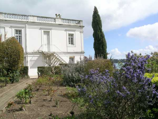 Maison Dinard  -  ref 2555282 (picture 1)