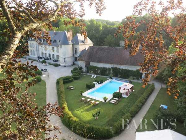 Château Montargis  -  ref 5203228 (picture 1)