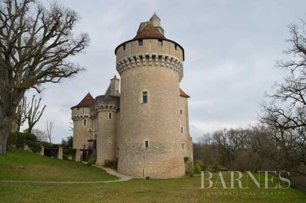 Château La Roche-Posay  -  ref 5347073 (picture 1)
