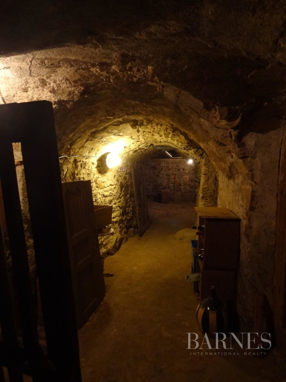 Balbigny  - Propriété 12 Pièces 5 Chambres - picture 11