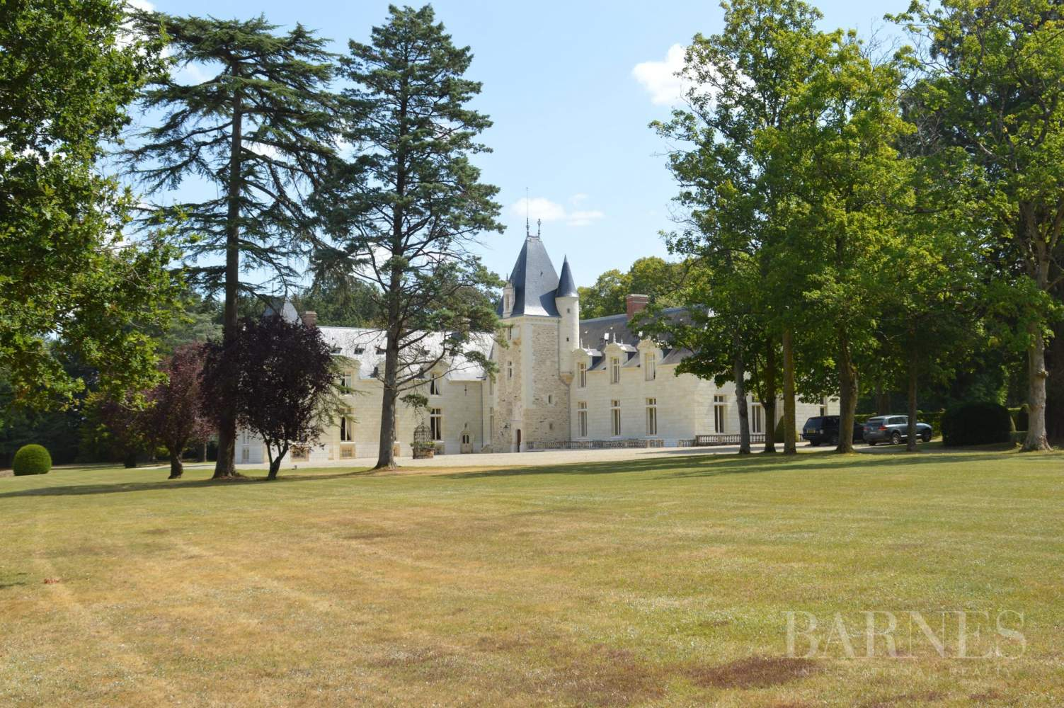 Doué-en-Anjou  - Château 30 Pièces - picture 6