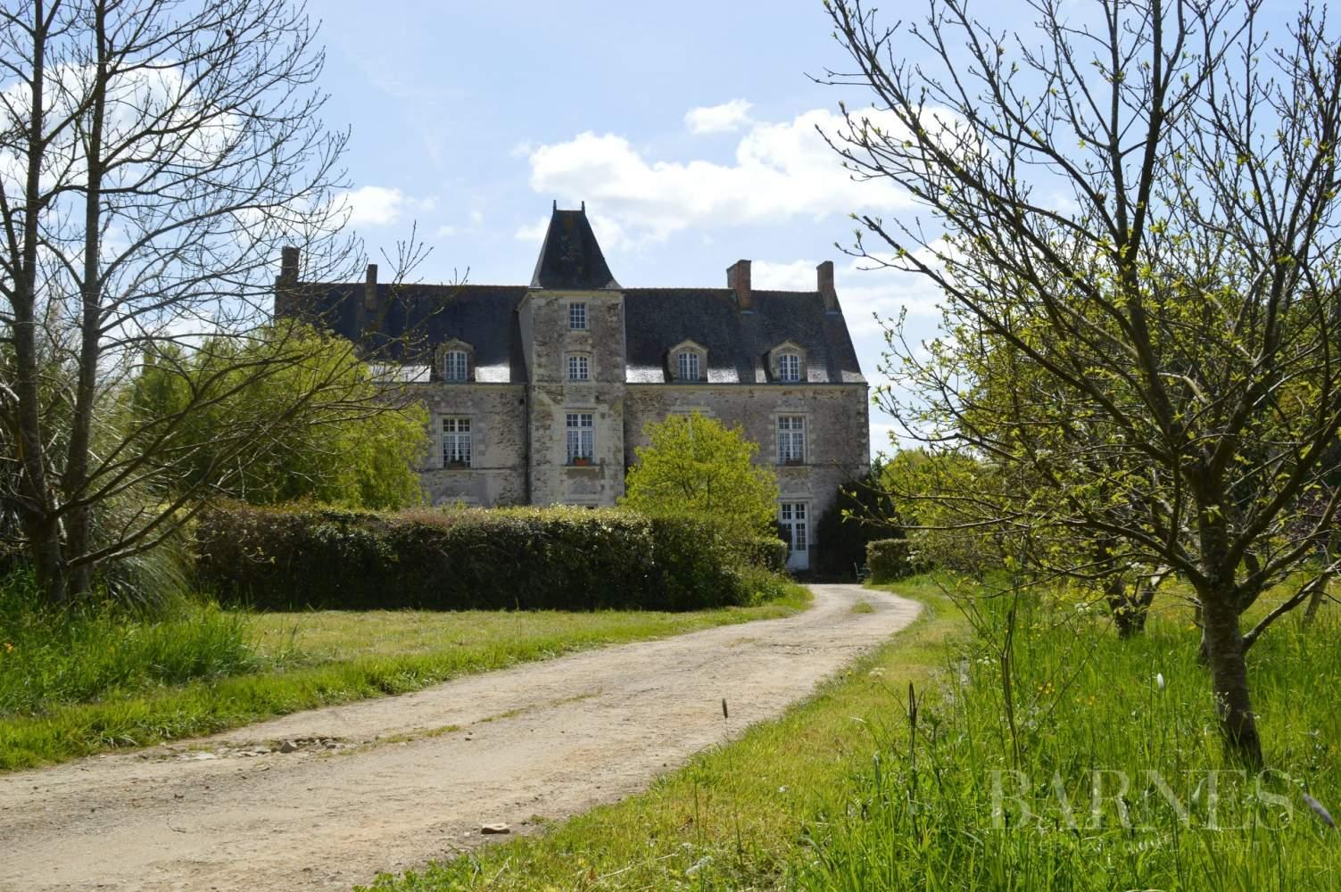 Nantes  - Château 15 Pièces 9 Chambres - picture 1