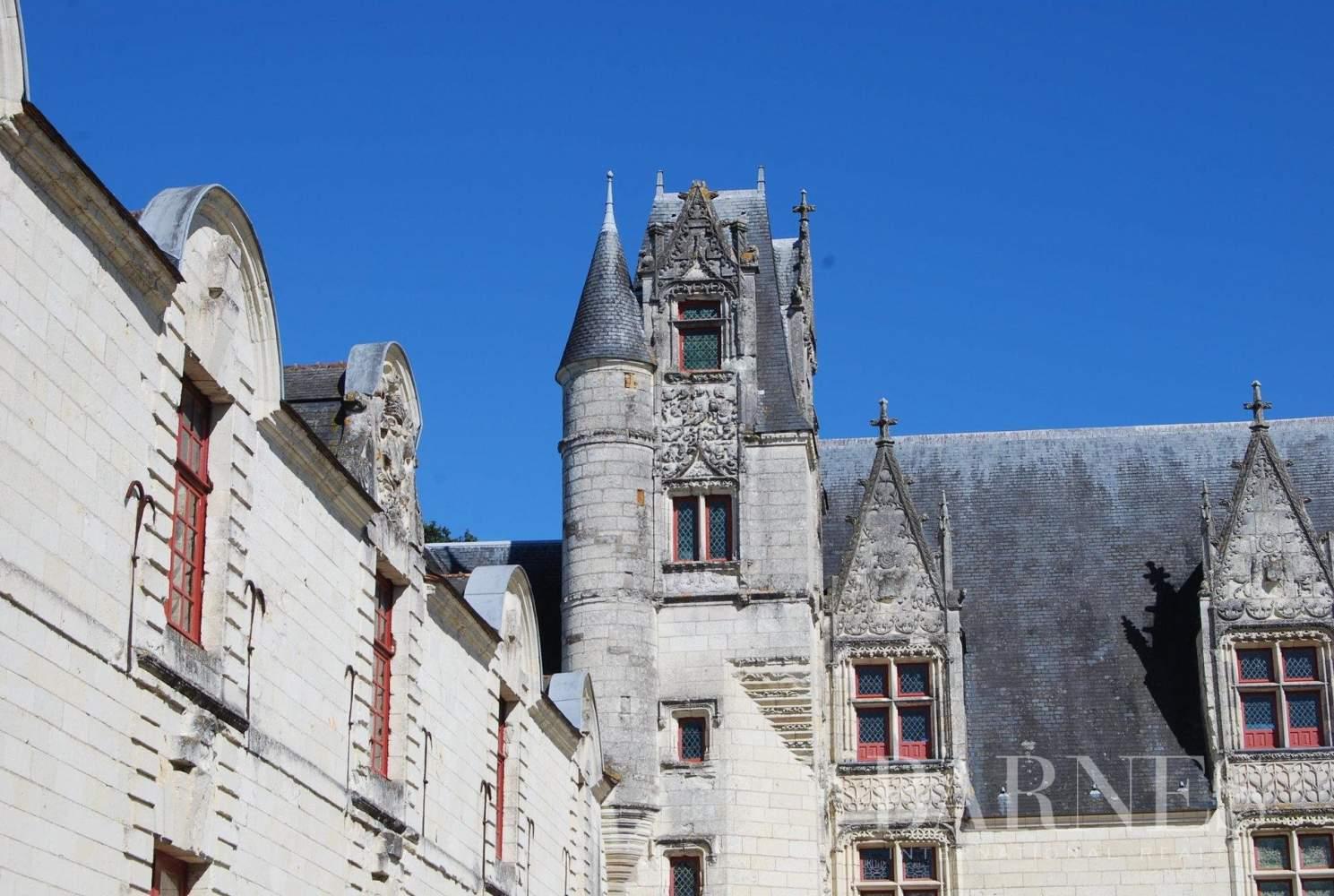 Nantes  - Château  - picture 4