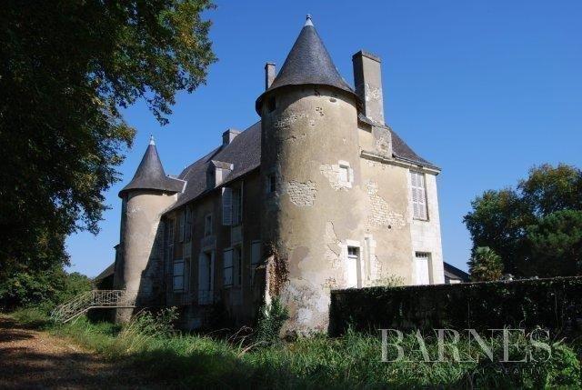 Châtellerault  - Château 18 Pièces - picture 1