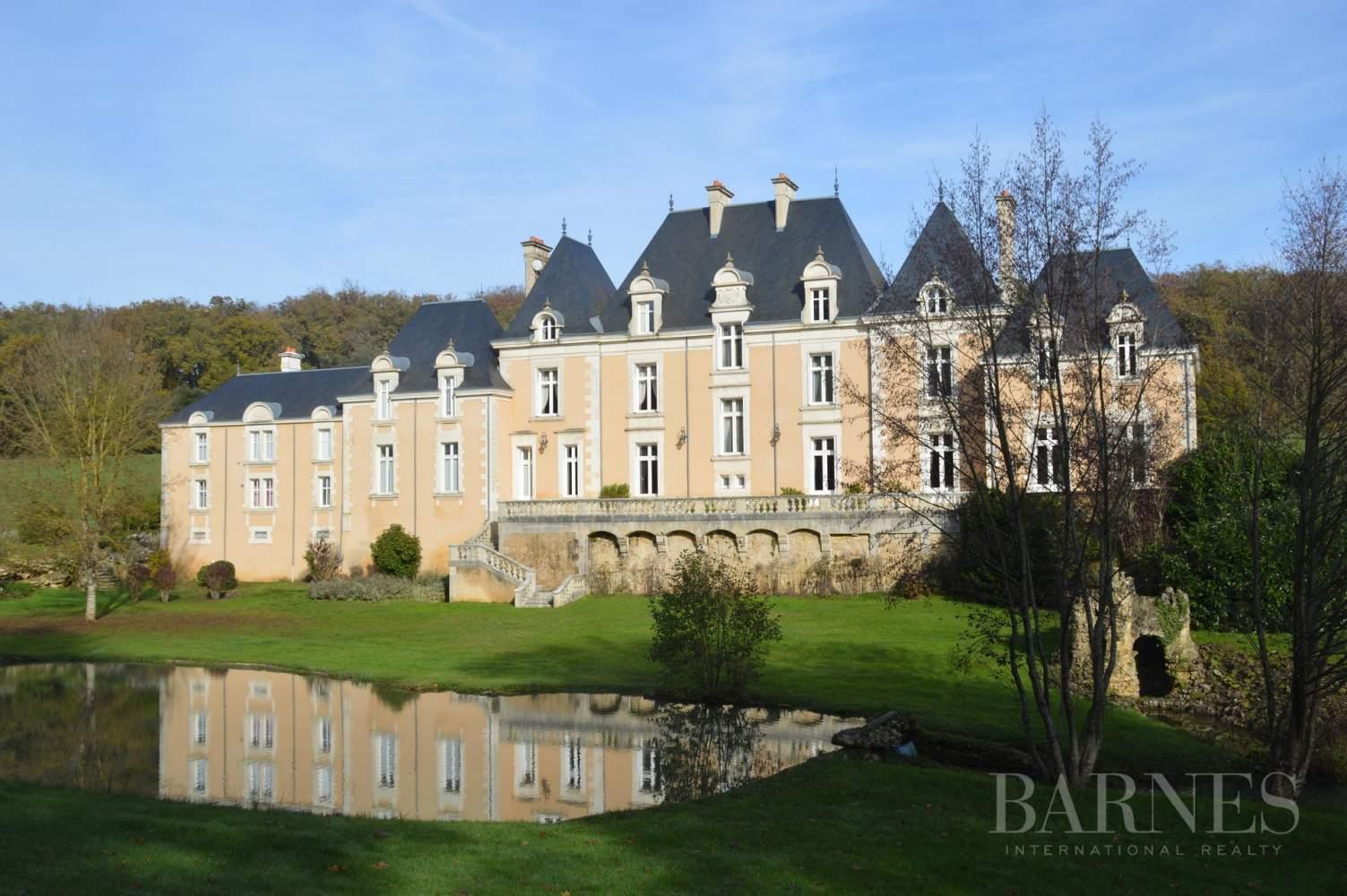 Poitiers  - Château 22 Pièces - picture 5