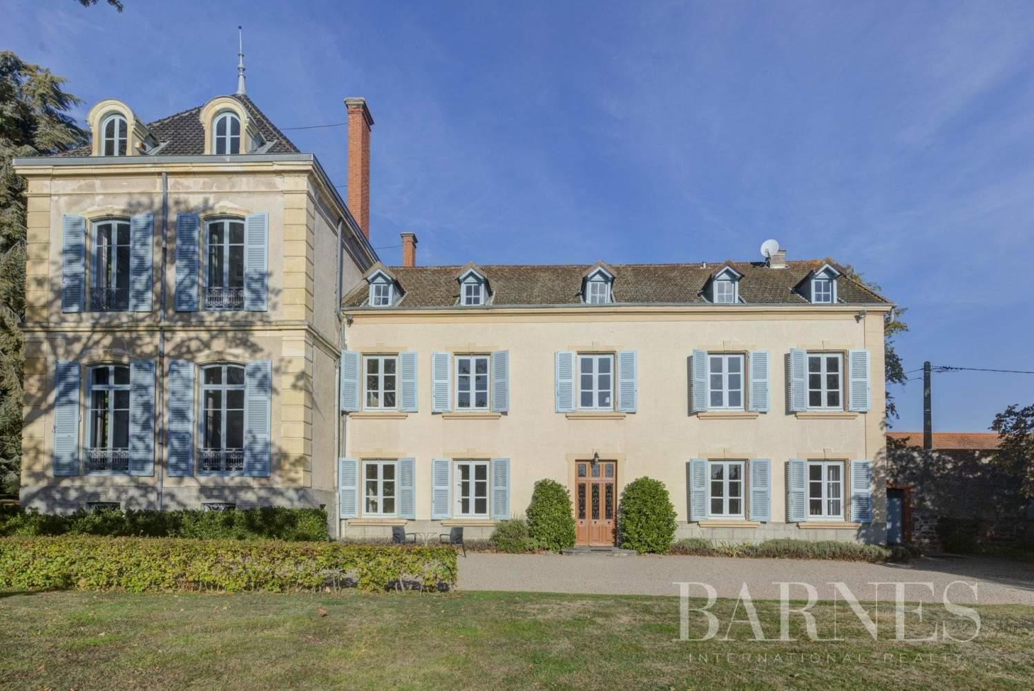 La Pacaudière  - Château 16 Pièces 10 Chambres - picture 3