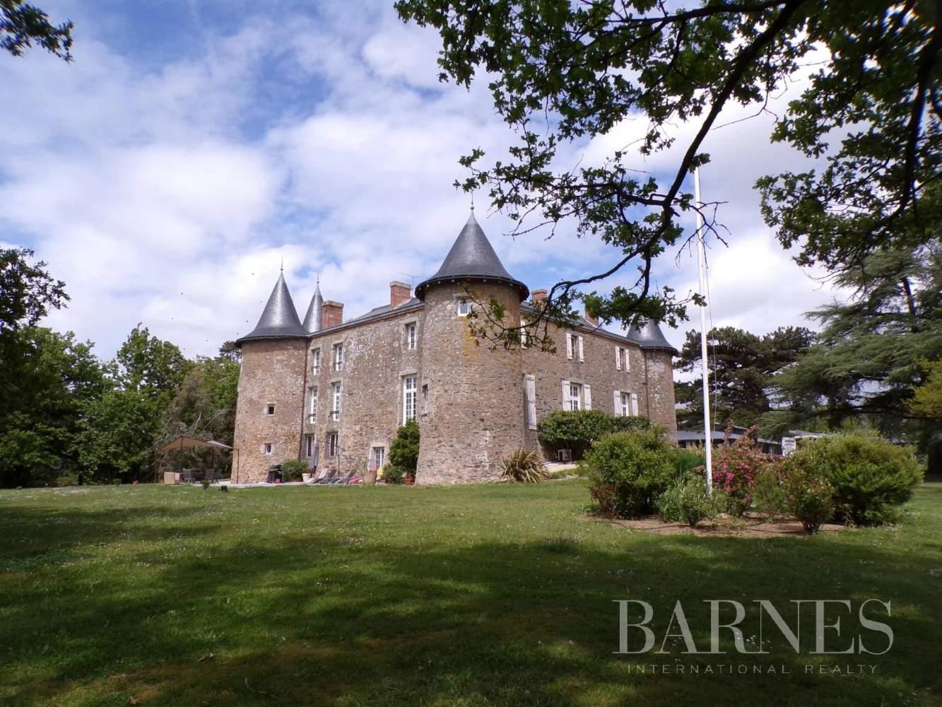 Angers  - Château 15 Pièces 8 Chambres - picture 19