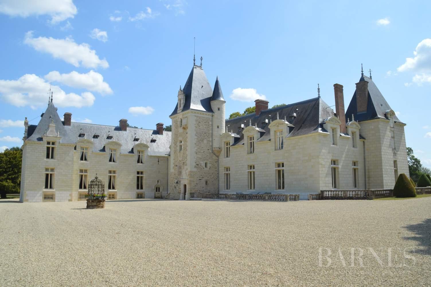 Doué-en-Anjou  - Château 30 Pièces - picture 3