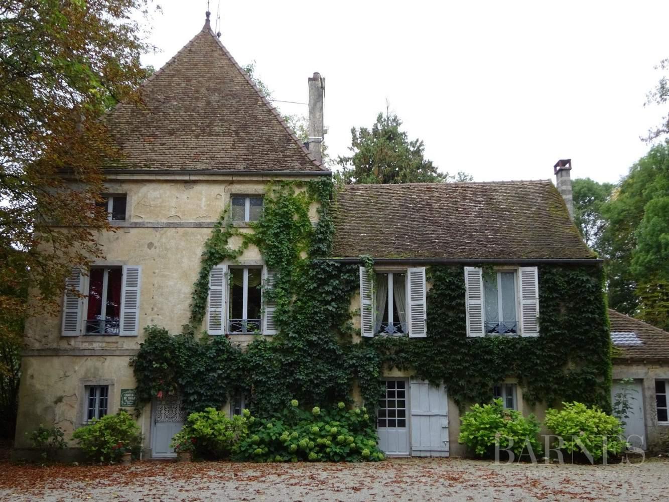 Beaune  - Château 22 Pièces 16 Chambres - picture 6